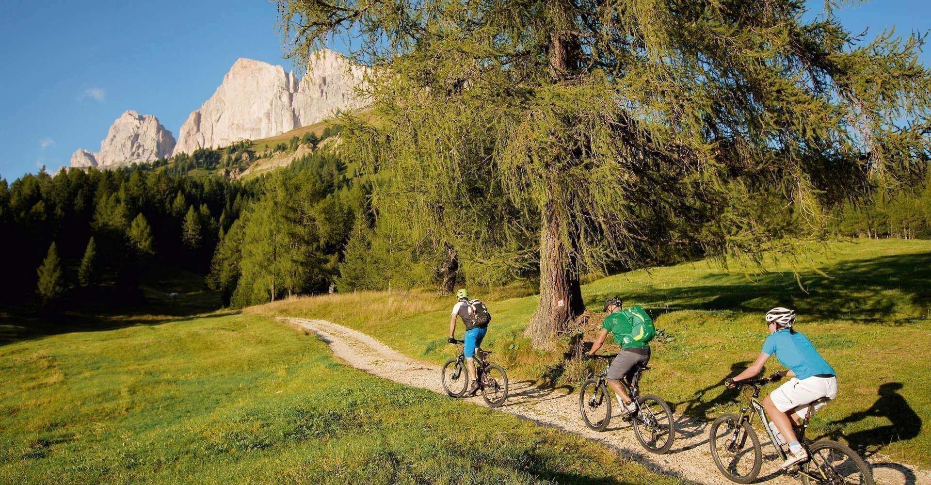 mountainbike-e-bike-steinegg-rosengarten
