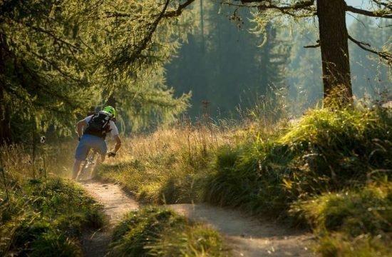 mountainbike-e-bike-steinegg-suedtirol